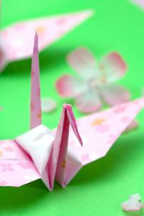 ピンクの折り鶴の写真素材 [FYI00230694]