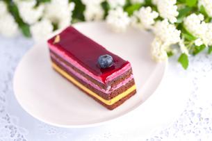 チョコとストロベリーのショートケーキの写真素材 [FYI00230712]
