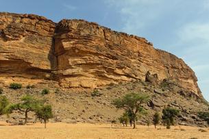 世界遺産バンディアガラの断崖の写真素材 [FYI00230802]