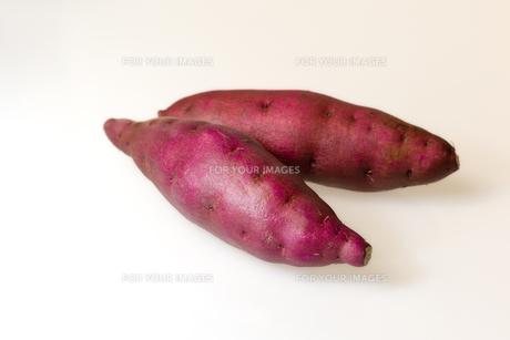 サツマイモの写真素材 [FYI00230809]