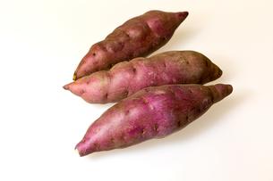サツマイモの写真素材 [FYI00230843]