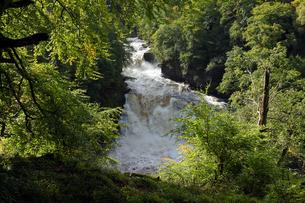 世界遺産地域、クライド川の激流の写真素材 [FYI00230867]