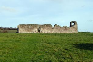 アイルランド、Ballymoon Castleの写真素材 [FYI00230872]