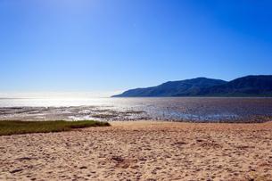 オーストラリア、ケアンズの干潟の写真素材 [FYI00230915]