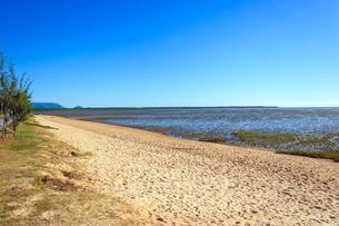 オーストラリア、ケアンズの海岸線の写真素材 [FYI00230918]