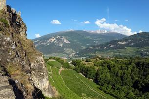 古城から望むワイン畑の写真素材 [FYI00230942]