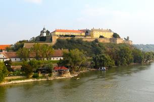 ペトロヴァラディン要塞とドナウ川の写真素材 [FYI00231069]