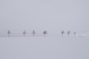 メルヘンな風景の素材 [FYI00231238]