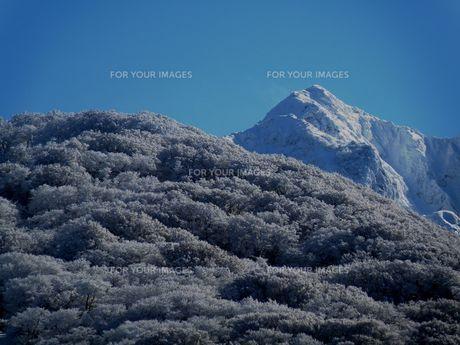 大山スキー場から見た伯耆大山の写真素材 [FYI00231360]