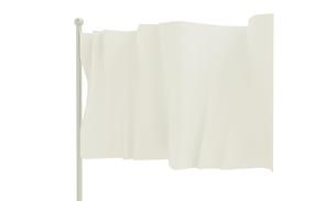 旗の写真素材 [FYI00231437]