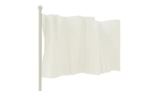 旗の写真素材 [FYI00231466]