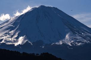 雪を頂く富士と遥かに飛ぶ鳥の姿の写真素材 [FYI00231547]