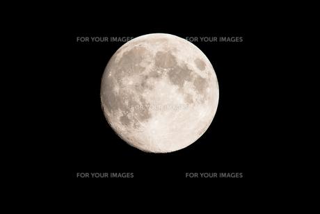 満月の写真素材 [FYI00231557]