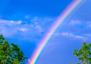 雨上がりの虹の色の写真素材 [FYI00231570]