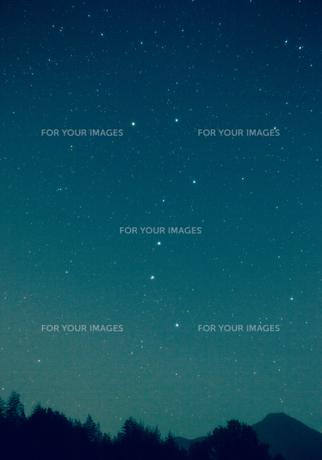 緑の夜空に輝く北斗七星の写真素材 [FYI00231575]