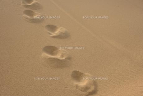 砂の足あとの素材 [FYI00231604]
