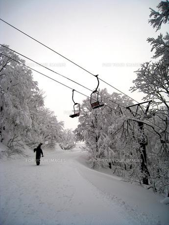 Winter Roadの写真素材 [FYI00231672]