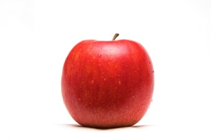 りんごの写真素材 [FYI00231716]