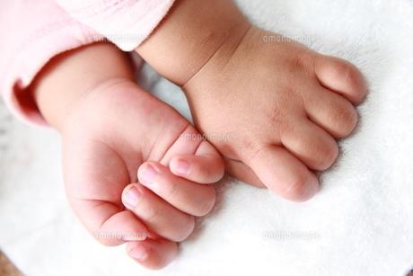 子供の手の写真素材 [FYI00231748]