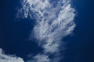 空の写真素材 [FYI00231770]