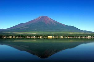 河口湖面に反射する富士山の写真素材 [FYI00231837]