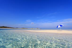 沖縄の美しいビーチとパラソルの素材 [FYI00232016]