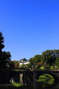皇居二重橋の写真素材 [FYI00232113]