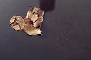 落ち葉 ハートの写真素材 [FYI00232246]