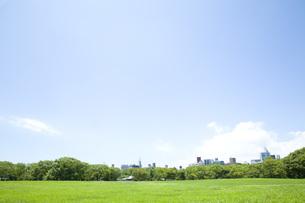 青空の下の公園の素材 [FYI00232552]