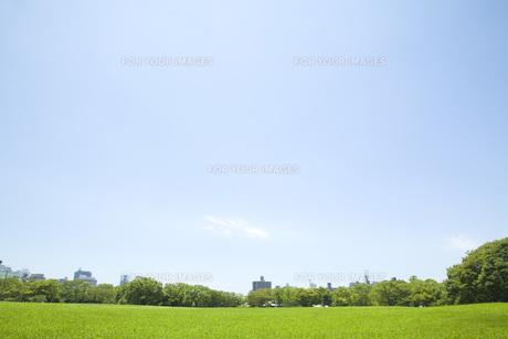 青空の下の公園の素材 [FYI00232562]