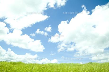 草原と空の素材 [FYI00232570]