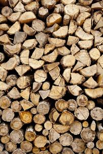 薪の写真素材 [FYI00232667]
