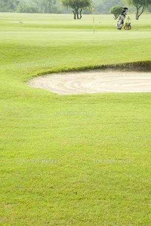 ゴルフコースの写真素材 [FYI00232740]