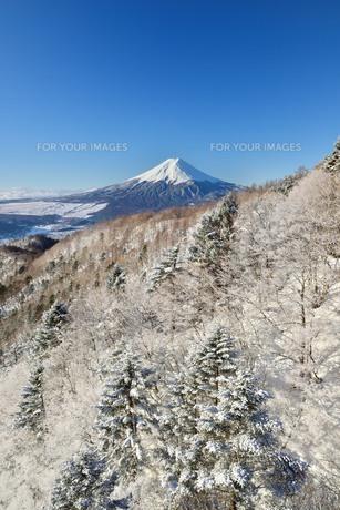三ツ峠より望む富士山の素材 [FYI00232952]