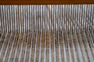 織り作業の筬と経糸の写真素材 [FYI00233564]