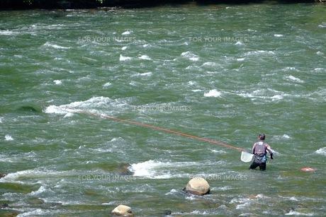江の川でのアユ釣りの写真素材 [FYI00233835]