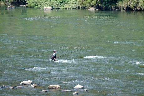 江の川でのアユ釣りの写真素材 [FYI00233868]