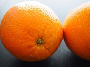 オレンジの写真素材 [FYI00234028]