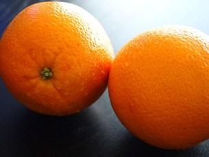 オレンジの写真素材 [FYI00234031]