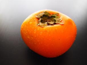 柿の実の写真素材 [FYI00234042]