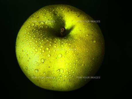 青りんごの写真素材 [FYI00234053]