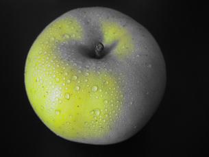 青りんごの写真素材 [FYI00234063]
