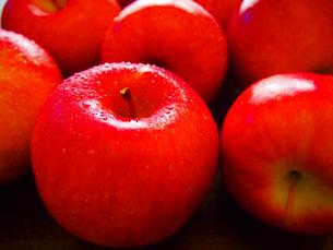 りんごの写真素材 [FYI00234067]