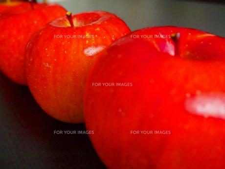 りんごの写真素材 [FYI00234072]