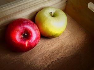 赤りんごと青りんごの写真素材 [FYI00234077]
