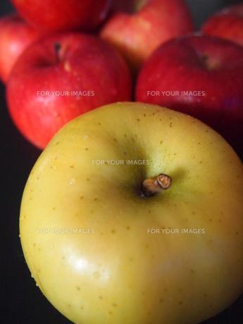 青りんごと赤りんごの写真素材 [FYI00234082]