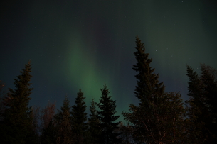 ノルウェーのオーロラの写真素材 [FYI00234165]