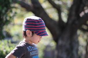 子供の横顔の写真素材 [FYI00234166]