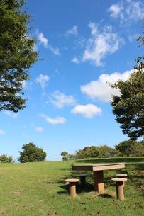 青空と公園の写真素材 [FYI00234186]