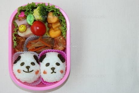 パンダのお弁当の写真素材 [FYI00234200]